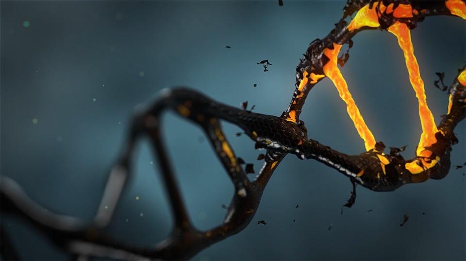 CRISPR Бихте ли редактирали бебето си? А1 Блог