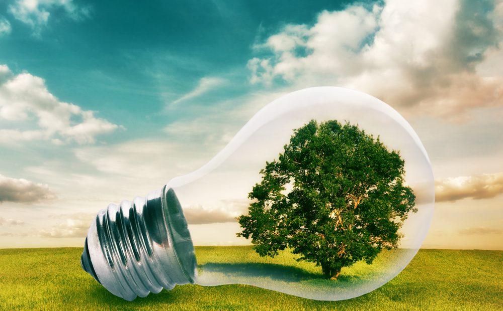 Единственият сигурен начин за спестяване на електроенергия е просто да намалите нейното използване. Знаем, че в ежедневието си със сигурност имате редица по-важни проблеми от незагасената крушка в коридора, но по-малкото използвано електричество би повлияло добре не само на джоба ви, но и на околната среда.