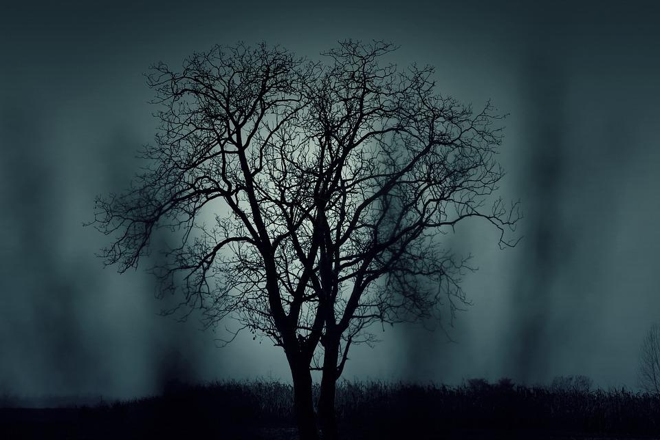 снимки Да поснимаме със смартфон в полумрака А1 Блог