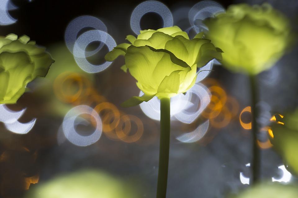 LED LED осветлението – много повече от пестене на енергия А1 Блог