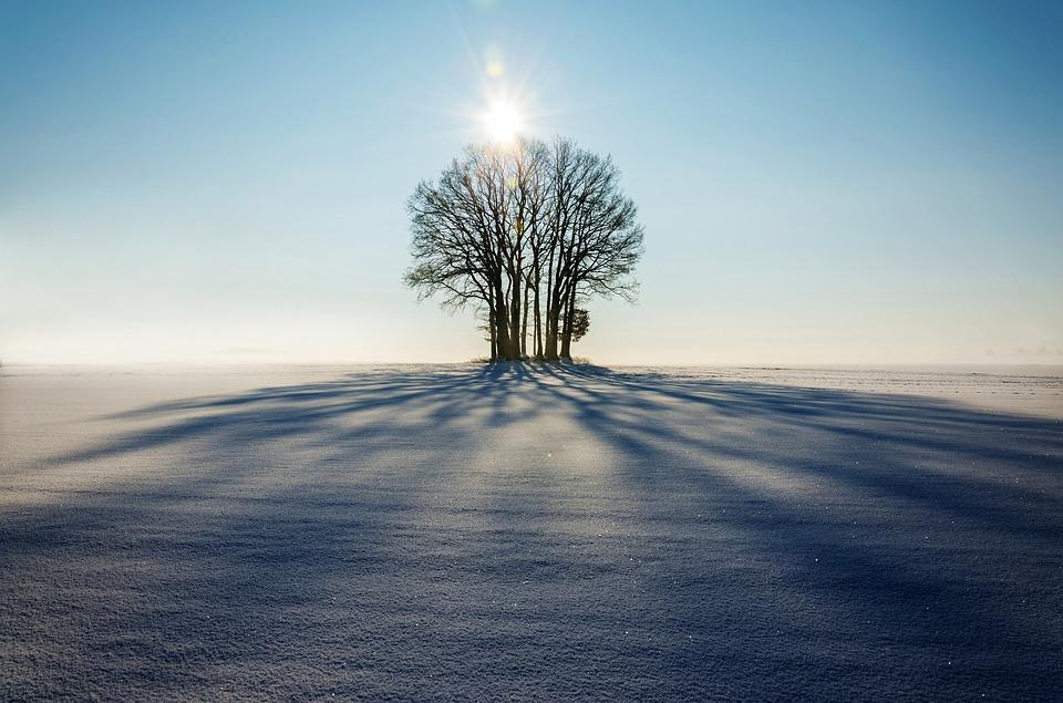 снимки Как да направим хубави зимни снимки със смартфон А1 Блог